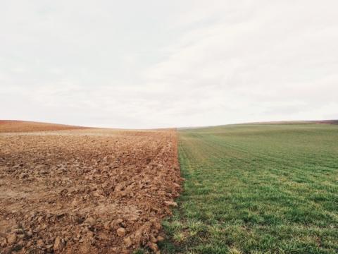 GEANNULEERD: CIMAT: multi-inzetbare robots in de kleinschalige landbouw