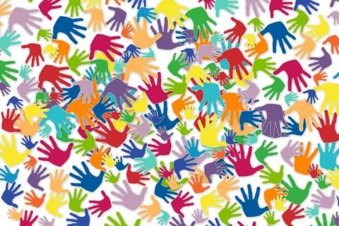 IVY: Een jonge vrijwilliger voor een Interreg-project!