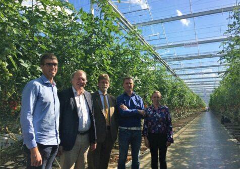 GLITCH: lange termijn kruisbestuiving van technologieën in de glastuinbouwsector
