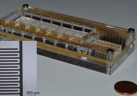 Biomat on microfluidic chip