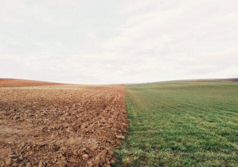 CIMAT: webinar multi-inzetbare robots in de kleinschalige landbouw
