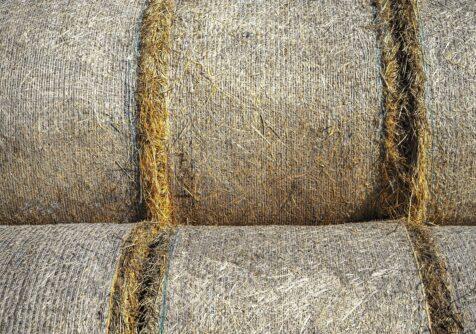 Grasgoed: Cursus raffinage van gras