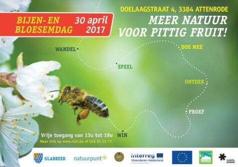 Meer natuur voor pittig fruit: bijen- en bloesemdag