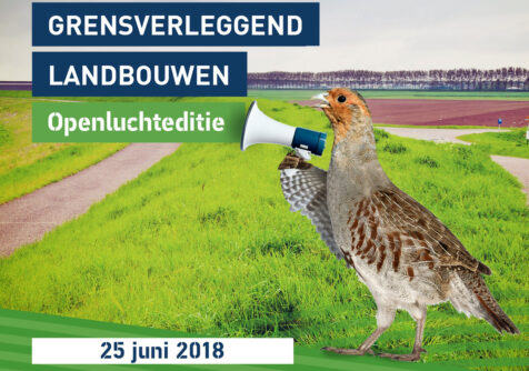 Grenspark Groot-Saeftinghe: grensverleggend landbouwen