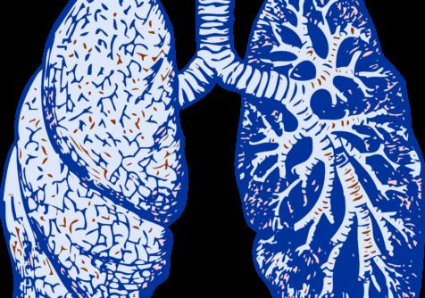 Innovatief kussen voor coronapatiënten op intensive care