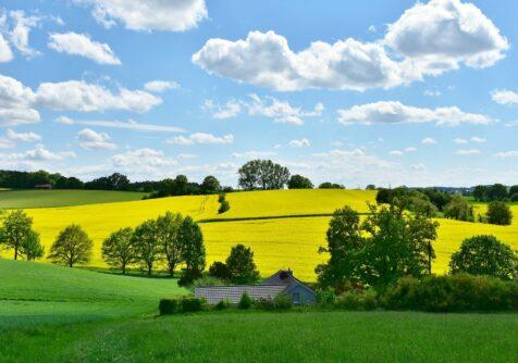 Bevraging over toekomst plattelandsgebieden