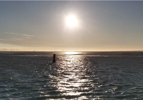 Het grote zandkoekje in de Zeeuwse Delta : Smartsediment