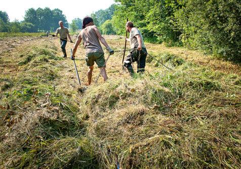 Grasraffinage: bedrijfsbezoek i.k.v. Grasgoed
